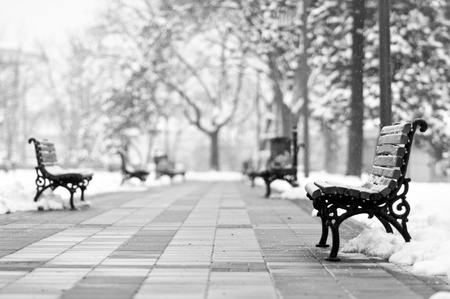the pavement: Bench in the park covered with snow