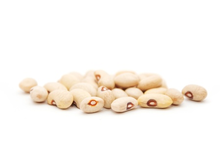 Assortment of white kidney (cannelini) beans. photo