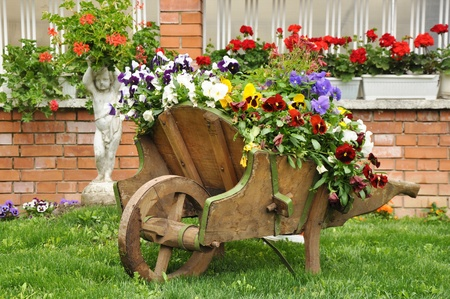 adirondack chair: Backyard garden with lots of colorful flowers