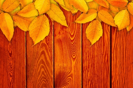 Autumn Leaves over wooden background.With copy space photo