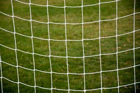 goal line: Soccer goal net against green background
