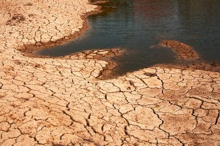 Dry land texture, background image. photo