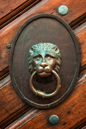 Decorative gilded lion head door knob photo