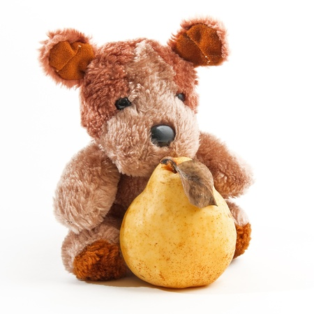 stuffed toy: Cute little teddy bear holding a pear over a white background Stock Photo