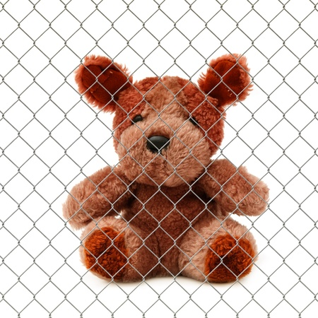 stuffed toy: Cute little teddy bear behind the wire fence over a white background