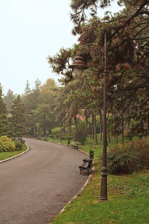 Paisaje de otoño, una ruta a pie Throught el parque en un día nublado y lluvioso. Foto de archivo - 11219346