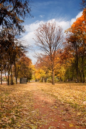 Autumn scenery. Beautiful golden fall in the park. Stock Photo - 11219350