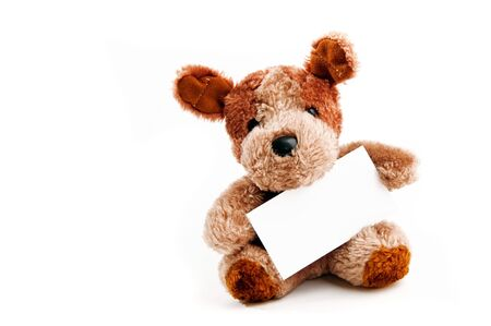 stuffed toy: Cute little bear toy holding a business card over a white background Stock Photo