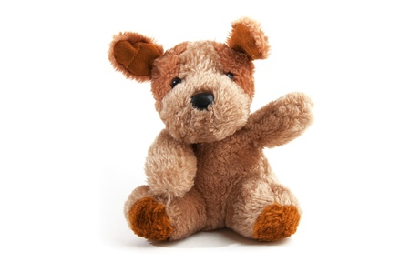 stuffed toy: Cute little teddy bear over a white background