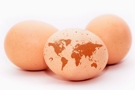 An egg with a shape of an detailed earth map photo