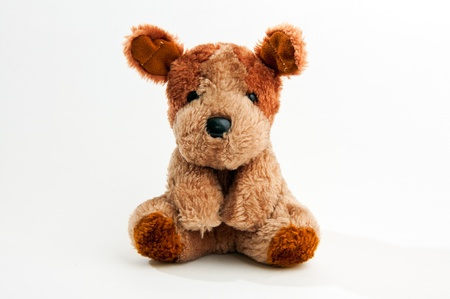 stuffed toys: Cute little teddy bear over a white background