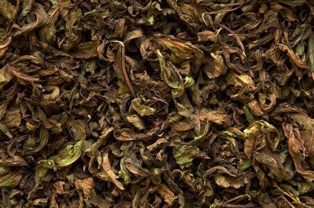 gunpowder tea: Dry pepermint prepared for tea, texture image.