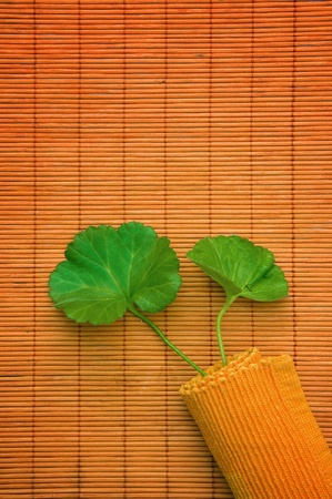 Green leaf over an orange bamboo straw matt photo