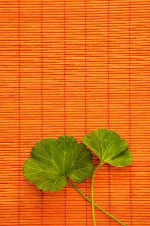 Green leaf over an orange bamboo straw matt photo