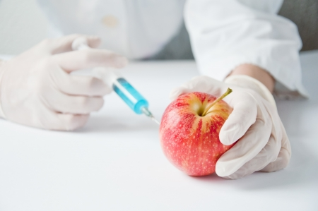 Sweet red apple in genetic engineering laboratory, gmo food concept. photo