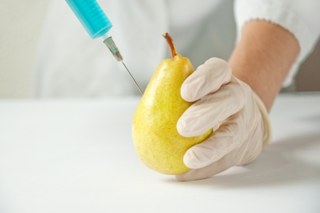 Sweet yellow pear in genetic engineering laboratory, gmo food concept. photo