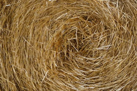 Close up image of hay straw stack, agriculture background photo