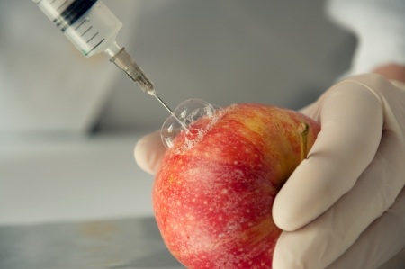 apple gmo: Sweet red apple in genetic engineering laboratory, gmo food concept