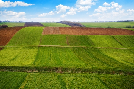 arable land: Agricultural field. Arable land in the spring, ready for the sowing season.