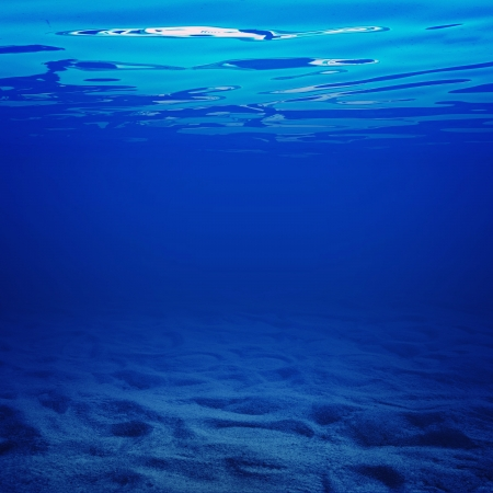 bottom of sea: Under water with sandy bottom; blue water background image
