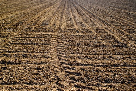 arable land: Plowed field or ploughland. Arable land in spring.