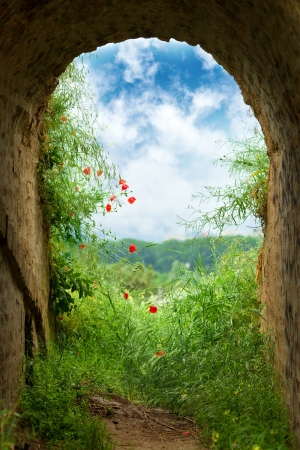 heavens gates: New hope at the end of the tunnel  Dark tunnel corridor with arch opening with green grass and flowers to a beautiful cloudy sky  Stock Photo