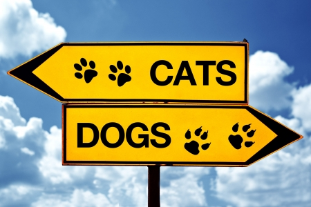 Cats or dogs, opposite signs. Two opposite signs against blue sky background. photo