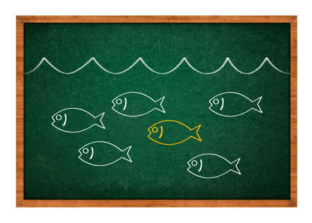 golden fish: Stand out from the crowd, simple drawing of a fish on a green chalkboard background  Stock Photo
