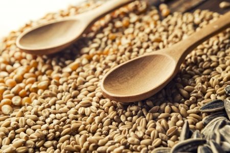 processed food: Wood spoons and cereal grains on wooden table