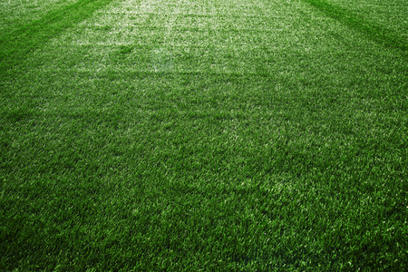 football field: Artificial turf at soccer field, green plastic grass as background.