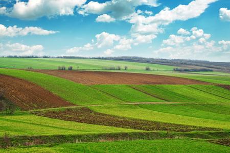 siembra: Campo agr?cola. La tierra cultivable en la primavera, listo para la temporada de siembra.