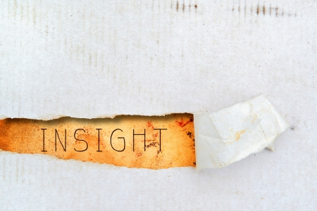 insight: Insight title on old grunge torn paper Stock Photo
