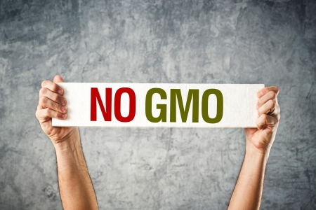 No GMO. Man holding banner with Anti GMO message. Stock Photo