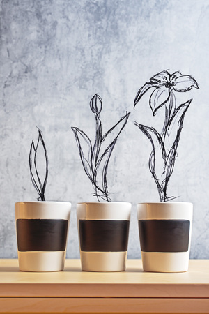 Flower Growth stages sketch on Empty flower pots photo
