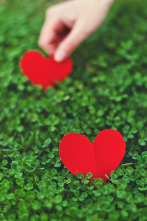 Red paper hearts in green clover. Saint Patricks day Conceptual image, celebrate spring season. Stock Photo