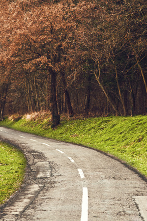 Winding road curves through autumn foliage and trees. Stock Photo