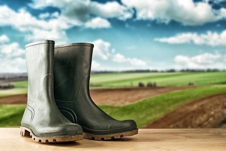 Groene rubberen laarzen. Agrarische werken laarzen voor allerlei klussen in de tuin.