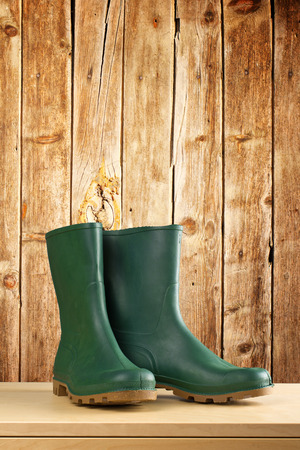 safety boots: Green rubber boots. Agricultural working boots for all sorts of garden work.