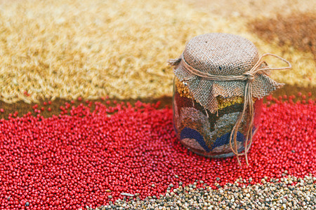 seeding: Various agricultural seeds in jar as agriculture seeding season abstract.