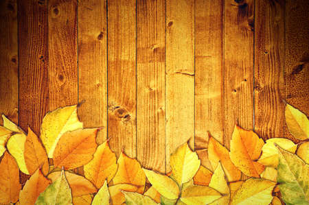 fall time: Yellow autumn leaves on wooden texture as fall season background with copy space Stock Photo