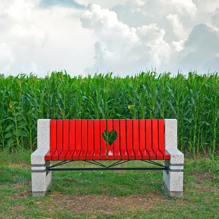 slit: Banco de madera con ranura en forma de coraz�n en el campo de ma�z