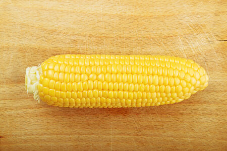 developed: Beautiful fully developed Corn Maize Cob with golden seed on wooden backgrpund