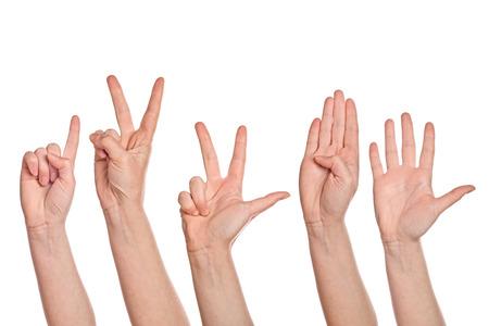 dedo: Cauc�sicas blancas manos femeninas contando de uno a cinco dedos, aislados en fondo blanco. Foto de archivo