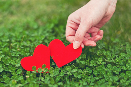 red clover: Red paper hearts in green clover. Saint Patrick