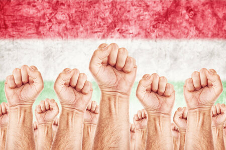 common goals: Hungary Labour movement, workers union strike concept with male fists raised in the air fighting for their rights, Hungarian national flag in out of focus background.