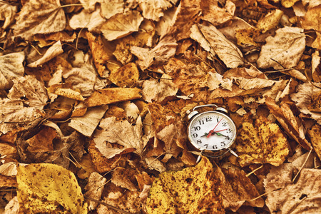 Vintage alarm clock in dry autumn leaves, Passing of time and season change concept. Selective focus.