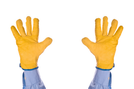 withhold: Construction Engineer Wearing Yellow Leather Protective Gloves Giving Up with Hands Raised in the Air, isolated on white background