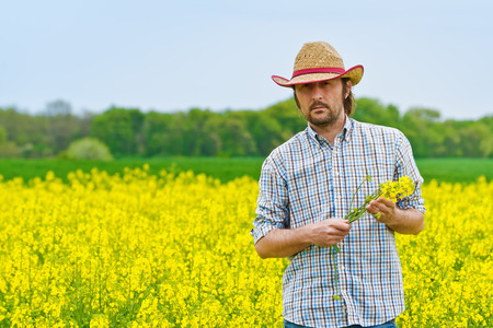 biodiesel: Male Farmer Standing in Oilseed Rapeseed Cultivated Agricultural Field Holding Canola Flowers for Examining and Controlling The Growth of Plants, Crop Protection Agrotech Concept.