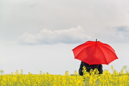 weather protection: Person with Red Umbrella Standing in Oilseed Rapeseed Agricultural Field as Crop Protection Agrotech Concept, Selective Focus with Shallow Depth of Field