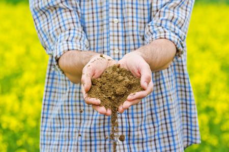 agricultura: Granjero de sexo masculino examina la calidad del suelo en la f�rtil semilla oleaginosa de colza Agr�cola Granja Tierra Foto de archivo